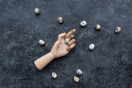 Mannequin hand holding quail egg on dark background