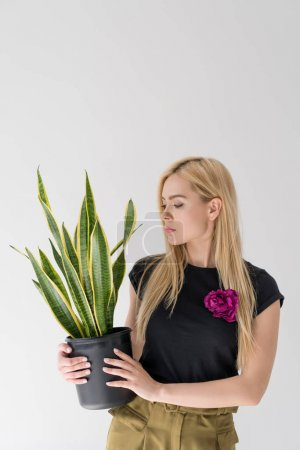 beautiful young woman holding potted plant isolated on grey