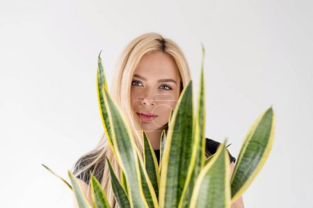 Photo for Beautiful blonde girl looking at camera through leaves on green houseplant isolated on grey - Royalty Free Image