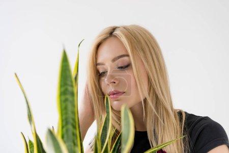 vue rapprochée de la belle jeune femme regardant la plante verte d'intérieur isolé sur fond gris
