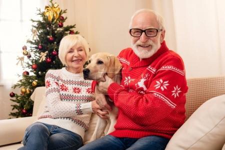 senior couple with labrador dog