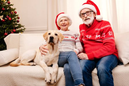 senior couple with labrador at christmas