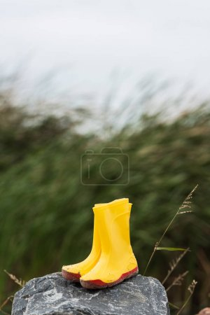 Photo for Yellow rain boots on rock with waving grassweed blurred on background - Royalty Free Image