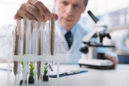 chemist working with test tubes