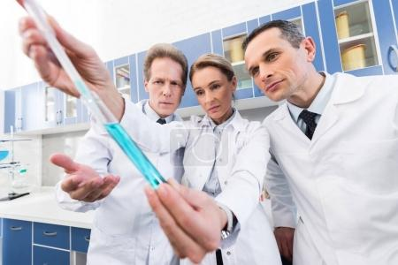 Photo for Professional scientists in white coats looking at test tube while making experiment in chemical lab - Royalty Free Image