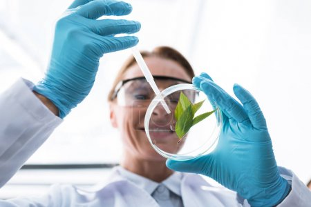scientist with petri dish