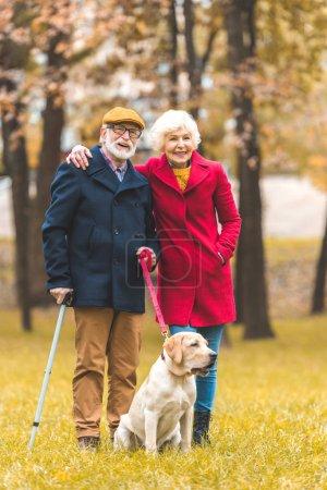 happy senior couple with dog