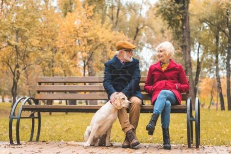 Photo for Cheerful senior couple with labrador retriever dog sitting on bench in autumn park - Royalty Free Image