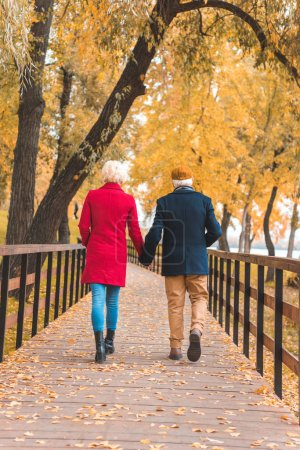 Photo for Back view of senior couple holding hands and walking in autumn park - Royalty Free Image