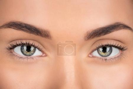Photo for Close-up shot of woman with beautiful eyes looking at camera - Royalty Free Image