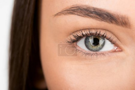 Photo for Close-up shot of woman with beautiful eye looking at camera - Royalty Free Image