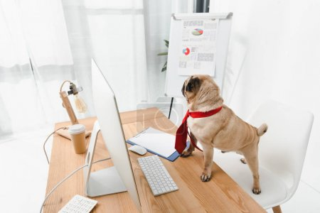 Photo for Business dog in necktie standing at table with desktop computer - Royalty Free Image