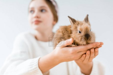close-up view of girl holding cute furry rabbit on white