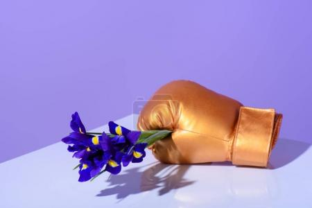 golden boxing glove holding purple iris flowers
