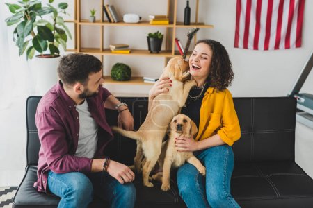 Photo pour Homme regardant petite amie qui tient deux chiots labrador - image libre de droit