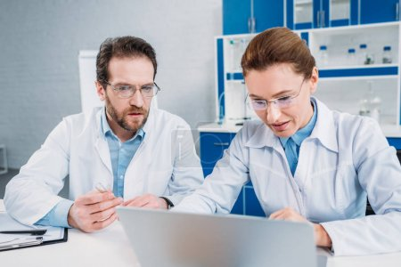 Photo for Portrait of scientists in lab coats and eyeglasses working on laptop together at workplace in lab - Royalty Free Image
