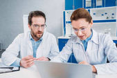 portrait of scientists in lab coats and eyeglasses working on laptop together at workplace in lab