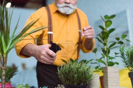 Photo pour Vue rapprochée de l'homme âgé tenant une bouteille de pulvérisation et arrosant des plantes en pot à la maison - image libre de droit