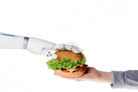 cropped shot of robot passing tasty burger to human isolated on white