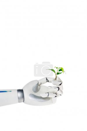 cropped shot of robot holding small green plant isolated on white