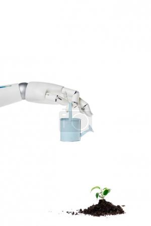 cropped shot of robot holding watering can over small plant isolated on white