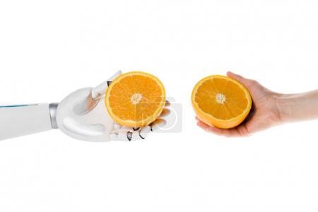 Photo pour Photo recadrée de robot et exploitation humaine moitiés d'orange isolé sur blanc - image libre de droit