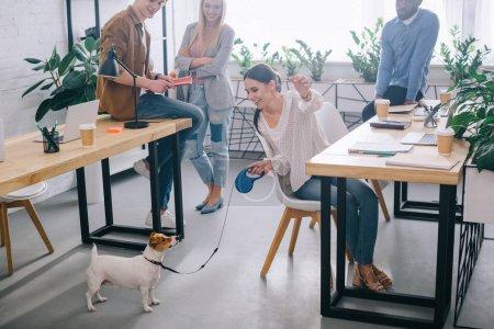 Photo pour Femme d'affaires jouant avec Jack Russel terrier en laisse et collègues debout derrière dans le bureau moderne - image libre de droit