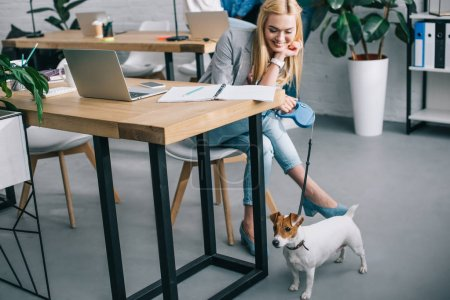 young smiling businesswoman holding jack russell terrier on leash