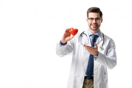 Smiling doctor wearing white coat with stethoscope and holding toy heart isolated on white