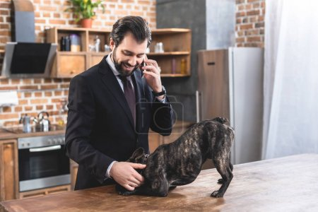 handsome loner businessman talking by smartphone and palming bulldog at kitchen