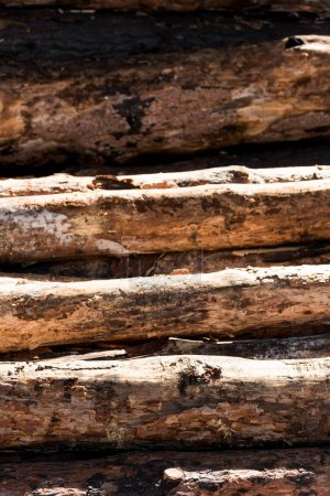 full frame image of logs placed in row background