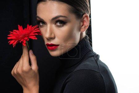 Photo pour Belle femme aux lèvres rouges tenant gerbera rouge isolé sur blanc et noir - image libre de droit