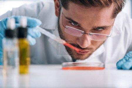 selektiver Fokus des Immunologen, der Pipette mit roter Flüssigkeit hält
