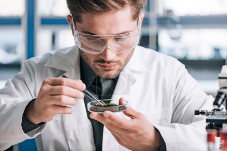 Photo for Handsome biochemist holding glass sample with ground and small plant - Royalty Free Image