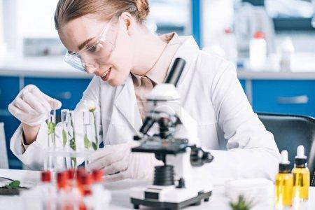 Photo pour Foyer sélectif du biochimiste heureux dans les lunettes à la recherche d'un tube à essai avec des plantes vertes près du microscope - image libre de droit