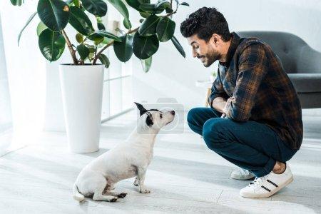 Photo pour Vue latérale du bel homme bi-racial souriant et regardant Jack Russell Terrier - image libre de droit