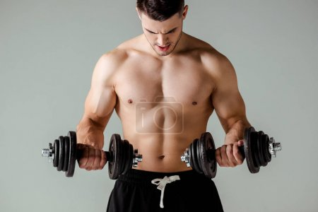 Photo for Sexy muscular bodybuilder with bare torso exercising with dumbbells isolated on grey - Royalty Free Image