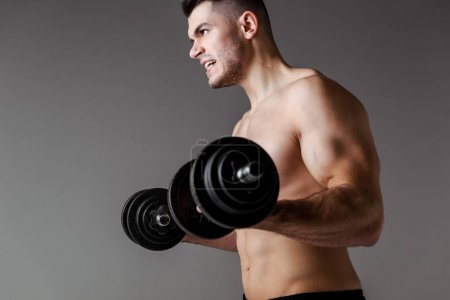 sexy muscular bodybuilder with bare torso exercising with dumbbells isolated on grey