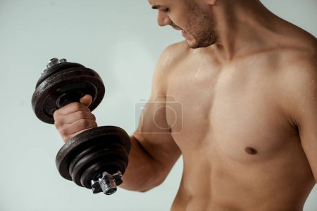 sweaty tense muscular bodybuilder with bare torso working out with dumbbell isolated on grey