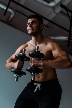 Photo for Low angle view of tense muscular bodybuilder with bare torso working out with dumbbells - Royalty Free Image