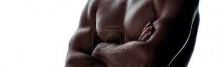 Photo for Cropped view of sexy muscular bodybuilder with bare torso posing with crossed arms in shadow isolated on white, panoramic shot - Royalty Free Image