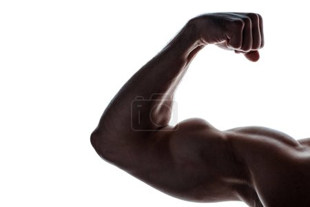 cropped view of muscular bodybuilder showing biceps in shadow isolated on white
