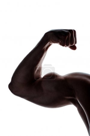 Photo for Cropped view of muscular bodybuilder showing biceps in shadow isolated on white - Royalty Free Image