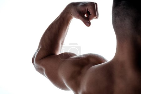 Photo for Cropped view of muscular bodybuilder showing triceps in shadow isolated on white - Royalty Free Image