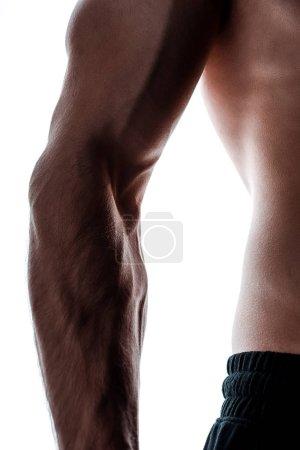 Photo pour Crochet de la main d'un meneur musculaire à l'ombre isolé sur le blanc - image libre de droit