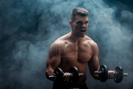 Photo for Tense sexy muscular bodybuilder with bare torso excising with dumbbells on black background with smoke - Royalty Free Image