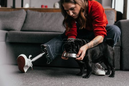 Photo for Girl with prosthetic leg feeding pug dog in living room - Royalty Free Image