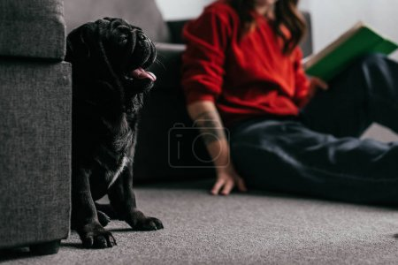 Photo for Selective focus of pug sitting by girl reading book on floor in living room, cropped view - Royalty Free Image