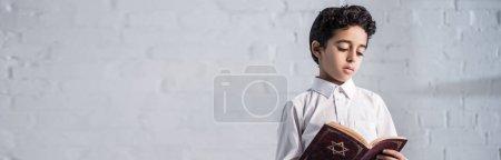 Photo pour Plan panoramique de mignon garçon juif en chemise lecture tanakh - image libre de droit