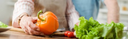 Cropped view of woman holding bell pepper while cooking by man in kitchen, panoramic shot